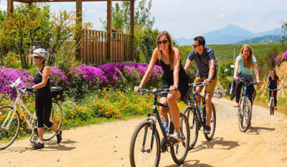 https://tours4tips.com/wp-content/uploads/2016/05/1-Casablanca-Bike-and-Wine-Tour-Kingston-Vineyards-2-2-559x327.jpg