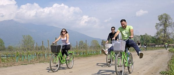 https://tours4tips.com/wp-content/uploads/2018/12/Pirque-Bike-and-Wine-Tour-Santiago-Chile-Fun-600x258.jpg